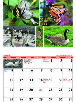 Wildlife Calendar 2021