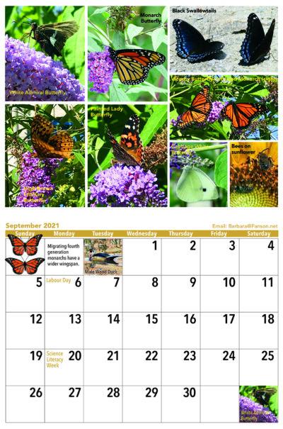 Butterfly Sept Calendar